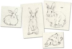 Behind the Design: Our Watercolor Bunny Pillows, Pottery Barn