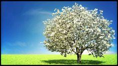Image from http://i.ytimg.com/vi/Vf4Y0RX7l80/maxresdefault.jpg.