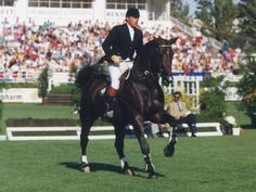 Darco! He has produced sooo many top jumping horses. His rider Ludo Philippaerts