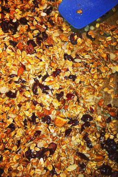 Frozen Orange - Juice Concentrate Recipes - Oprah.com thinking about making some bars as gifts for my guests!