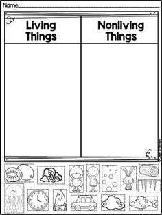 FREEBIE Living and Non-living Things sort!