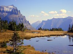 We're looking forward to seeing this scene again when we hike near Logan's Pass in Glacier National Park, #Montana.