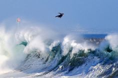 The Wedge in Newport Beach. Surf it if you dare.