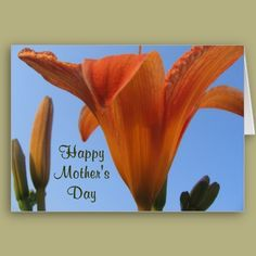 Mother's Day is coming up! http://www.zazzle.com/mothers_day_lilies_card-137479368731406869?rf=238712894402317539