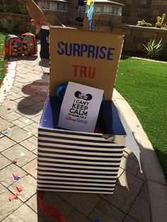 Surprise box Disney Cruise, Disney Trips, Disney Reveal, Surprise Box, Road Trip, Vacation, Vacations, Road Trips, Holidays Music