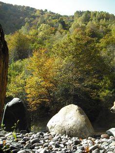La magie de l'automne réinventé par de grandes pierres dressées
