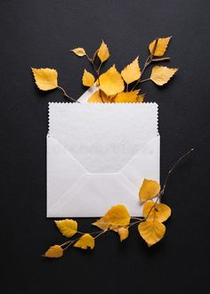 Autumn card with fall foliage and envelope with congratulation. Envelope with a congratulation on a black background. Autumn card with fall foliage stock photos Fall Cards, Black Backgrounds, Congratulations, Envelope, Autumn, Seasons, Stock Photos, Image, Autumn Cards