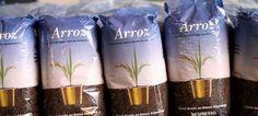 Projeto 100% nacional doa 67 toneladas de arroz ao Banco Alimentar