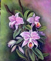 Resultado de imagem para pintura orquideas