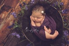 newborn photography, newborn girl, wreath photography prop, purple