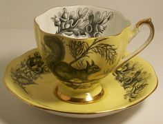 Queen Anne Fine Bone China England Yellow Porcelain Tea Cup Saucer Squirrel | eBay