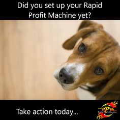 Get Rich Quick, How To Get Rich, Make Money From Home, Way To Make Money, Money Machine, Take Action, Earn Money Online, Affiliate Marketing, Online Business