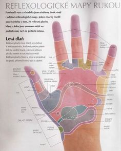 Acupressure More Effective Than Physical Therapy - Acupuncture Hut Acupressure Treatment, Acupuncture, Foot Reflexology, Healthy Lifestyle Tips, Tai Chi, Ayurveda, Diy Beauty, Body, Massage