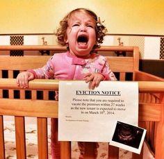 Best Pregnancy Announcement Ever!