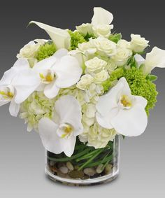 'Celestial - White Hydrangea, Roses, Orchids: Unique and unusual flower arrangements, Carithers Flowers Atlanta, Buckhead, Decatur, Duluth, Dunwoody, Lawrenceville, Marietta, Roswell, Sandy Springs, Smyrna, Vinings, Woodstock - Carithers Flowers: Voted Best Florist Atlanta, unique flower arrangements, Roses, Orchids with same-day flower delivery