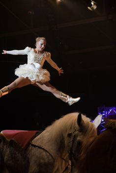 Beautiful performance with horses at the circus in Ahoy Rotterdam