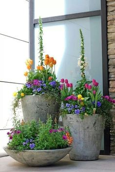 I love the concrete planter contrasting with the colourful flowers. So pretty!