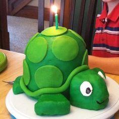 Turtle 3D Cake