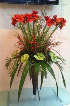 Amarylis, Anthrium and Ilex combine to make a Christmas display