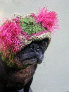 I'm into fashion!