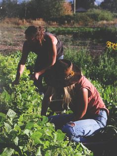 Love What You Do: Sonoma Broadway Farms