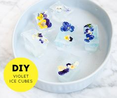 Edible dried violets make these DIY Flower Ice Cubes quick, easy AND functional.