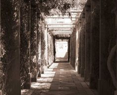 Path to Palace Garden