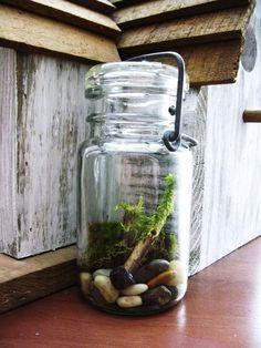 Vintage Mason Jar Terrarium