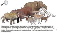 megafauna of Eurasia