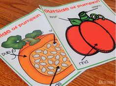 Inside and Outside of a Pumpkin Parts Label Charts