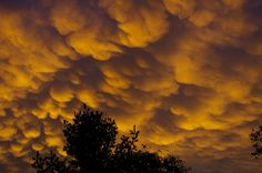 Weird, Rare Clouds and the Physics Behind Them Mammatus Clouds, Weather, Sunset, Amazing, Nature, Brown Sugar, Outdoor, Image, Landscaping