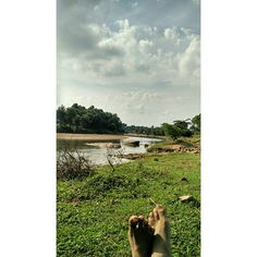 Landscapes of Bengal and their glory