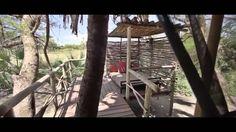 CHEM CHEM Safari Lodge Private Safari, Places To Visit, Plants, Paradise, Plant, Planets