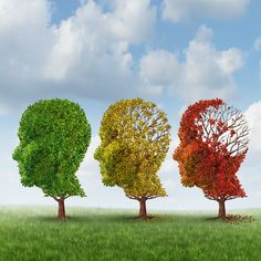 Are You Unknowingly Contributing To Your Brain's Decline? via @dlhampton
