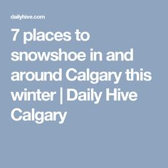 7 places to snowshoe in and around Calgary this winter   Daily Hive Calgary