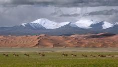 Explore China: Altun Mountains Nature Reserve, Xinj iang Province .. .- Doğu Türkistan