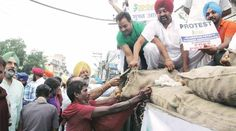 Reverse of onions: Potato farmers at receiving end, as prices crash