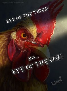 Eye of the Cox!