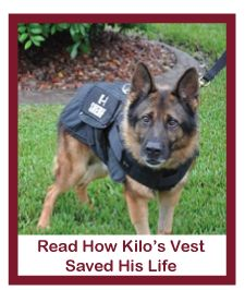 Did you know in most cases law enforcement agencies do not have budgets to provide vests for K-9 officers? Vested Interest in K-9s, Inc. is a 501c(3) non-profit fundraising organization dedicated to providing bullet and stab protective vests for law enforcement K-9′s throughout the United States.