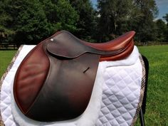 Butet 16.5 inch Jumping/Close Contact Saddle with extras. #Butet