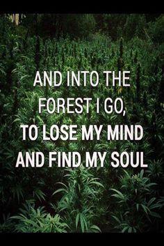 Resultado de imagen para american hippie pics with quotes