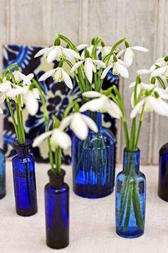 Snowdrops in vintage blue glass bottles.