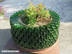 Recycle: glass bottle planter