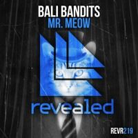 Bali Bandits - Mr. Meow [OUT NOW!] by Revealed Recordings on SoundCloud