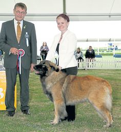 Top of the groups by Simon Parsons #dogs #dogshows #dogshowing