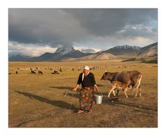 Milking the cows in the steppes by Patrick Hubert on 500px