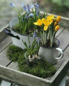 28 ideas for flowers spring decoration center pieces Garden Art, Garden Design, Garden Ideas, Diy Osterschmuck, Easy Diy, Crocus Bulbs, Diy Easter Decorations, Diy Decoration, Decor Ideas