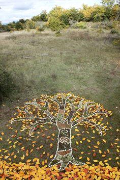 Arbre d' automne (Aufbau), 50x40 cm von Alain Bernegger Installation au sol ;en pierres et en feuilles