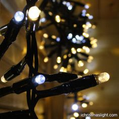 Outdoor LED string lights with blinking bulbs Mens Christmas T Shirts, Funny Christmas Sweaters, Christmas Carol, All Things Christmas, Christmas Lights, Christmas Day Celebration, Types Of Lighting, Led String Lights, Outdoor Christmas Decorations
