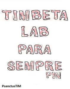 TIMbeta LAB REpin